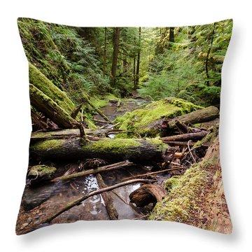 Wild River Views Throw Pillow