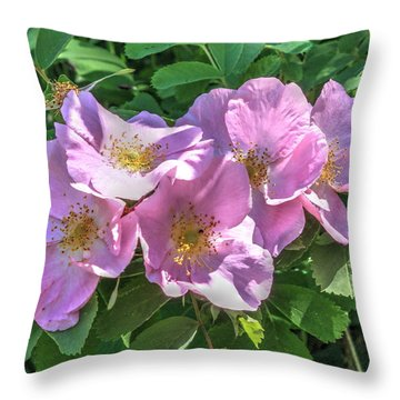 Wild Rose Cluster Throw Pillow by Jim Sauchyn