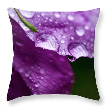 Throw Pillow featuring the photograph Wild Rose Droplet by Darcy Michaelchuk