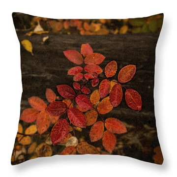 Wild Rose Leaves Throw Pillow