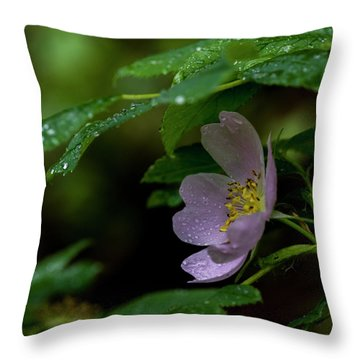 Throw Pillow featuring the photograph Wild Rose With Shelter by Darcy Michaelchuk