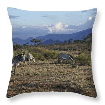 Wild Samburu Throw Pillow by Michele Burgess