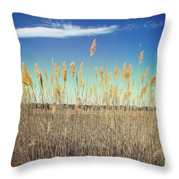 Throw Pillow featuring the photograph Wild Sea Oats by Colleen Kammerer
