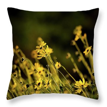 Throw Pillow featuring the photograph Wild Spring Flowers by Kelly Wade