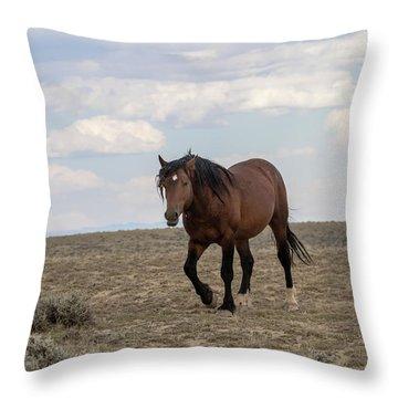 Wild Stallion Throw Pillow