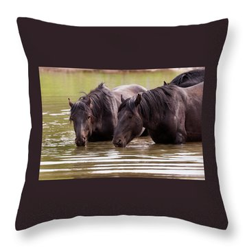 Wild Stallions At The Water Hole Throw Pillow