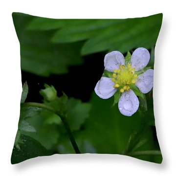 Wild Strawberry Blossom And Raindriops Throw Pillow