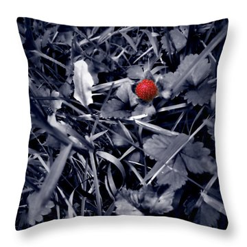 Throw Pillow featuring the photograph Wild Strawberry by Iowan Stone-Flowers