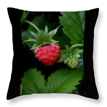 Wild Strawberry Throw Pillow