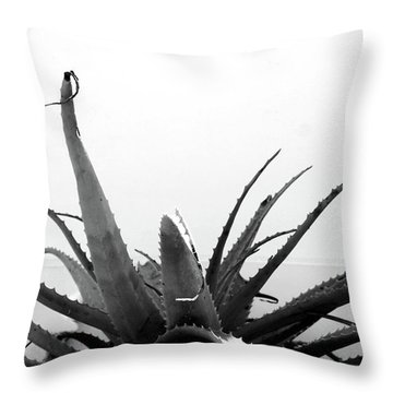 Wild Succulent-  By Linda Woods Throw Pillow by Linda Woods