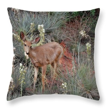'wild' Times At Garden Of The Gods Colorado Throw Pillow