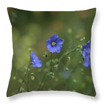 Wild Treasure Throw Pillow