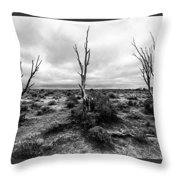 Throw Pillow featuring the photograph Wild Trinity by Julian Cook