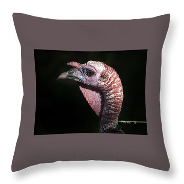 Wild Turkey Throw Pillow by Diane Giurco