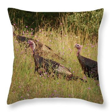 Wild Turkeys Throw Pillow by Michael Peychich