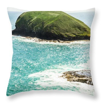 Wild Western Waters Throw Pillow