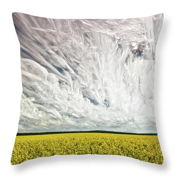 Wild Winds Throw Pillow