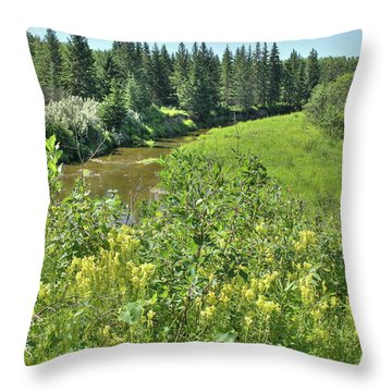 Wild Yellow Flowers  Throw Pillow by Jim Sauchyn