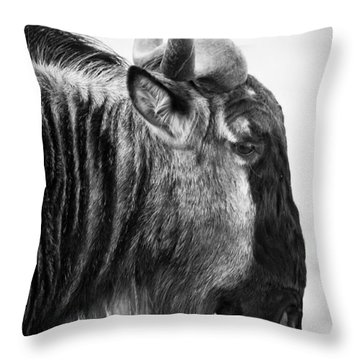 Wildebeest Throw Pillow by Adam Romanowicz