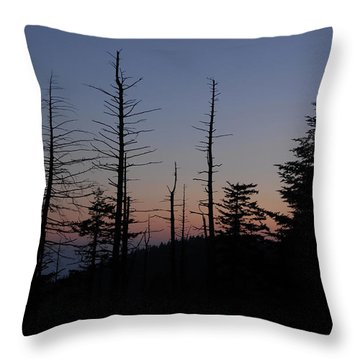 Wilderness Throw Pillow by David Lee Thompson