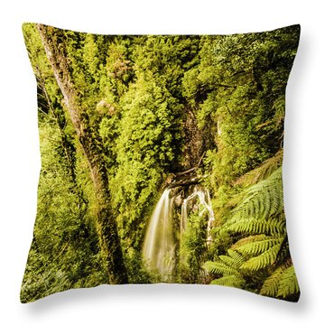 Wilderness Falls Throw Pillow
