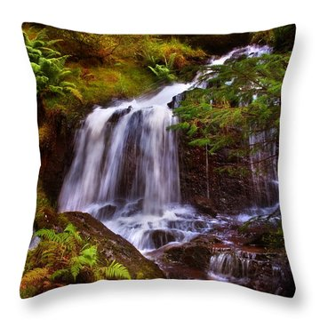 Wilderness. Rest And Be Thankful. Scotland Throw Pillow