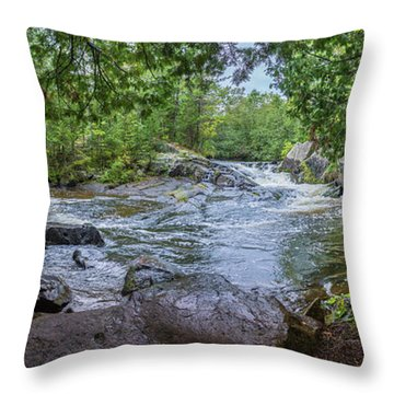 Throw Pillow featuring the photograph Wilderness Waterway by Bill Pevlor
