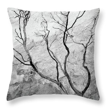 Wildfire Manzanita Throw Pillow