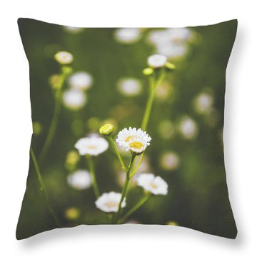 Throw Pillow featuring the photograph Wildflower Beauty by Shelby Young