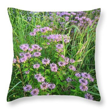 Wildflower Bouquet In Glacial Park Throw Pillow