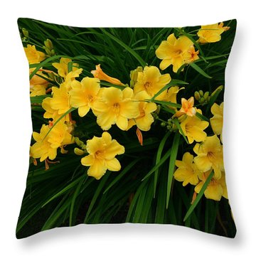 Throw Pillow featuring the photograph Wildflower Bouquet by Linda Edgecomb