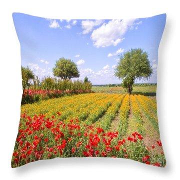 Wildflower Farm Throw Pillow by Bonnie Barry