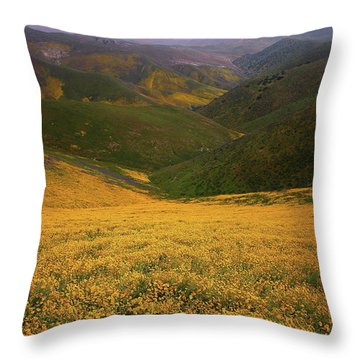 Wildflower Field Up In The Temblor Range At Carrizo Plain National Monument Throw Pillow