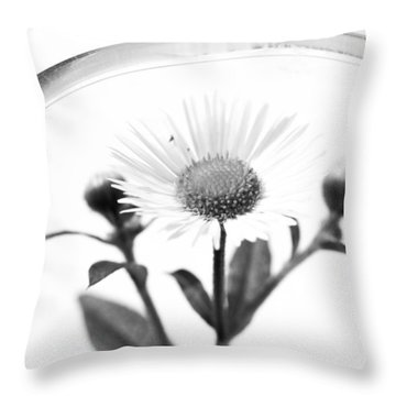 Wildflower In A Wine Glass Black And White Throw Pillow