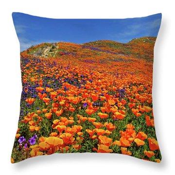 Wildflower Jackpot Throw Pillow