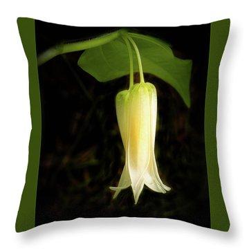 Smiths Fairybell Wildflower Throw Pillow
