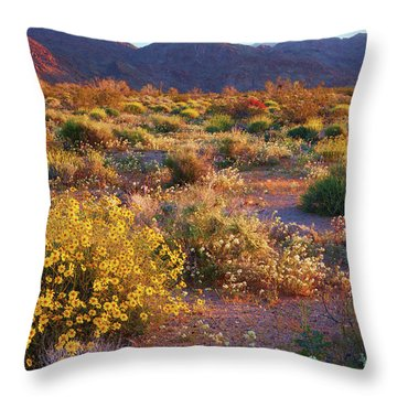 Throw Pillow featuring the photograph Wildflower Meadow At Joshua Tree National Park by Ram Vasudev