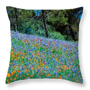 Throw Pillow featuring the photograph Wildflower Meadow - Figueroa Mountains California by Ram Vasudev