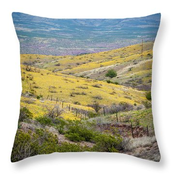 Wildflower Meadows Throw Pillow by Karen Stephenson