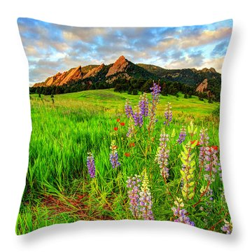 Wildflower Mix Throw Pillow by Scott Mahon