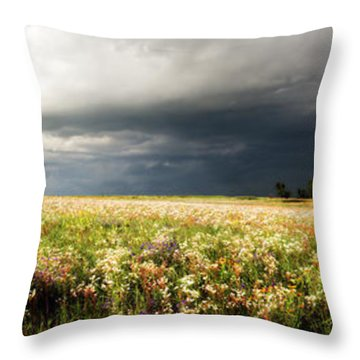 Wildflower Panorama 2008 Throw Pillow