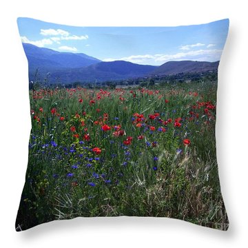 Wildflower Path Throw Pillow
