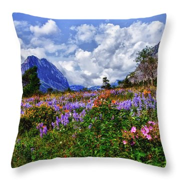 Wildflower Profusion Throw Pillow by Albert Seger