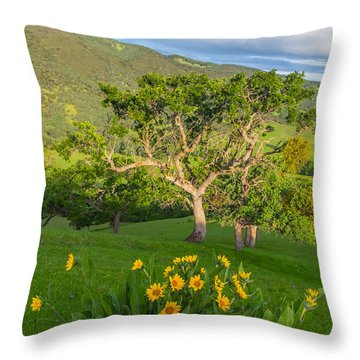 Wildflowers Above Round Valley Throw Pillow by Marc Crumpler