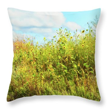 Wildflowers Along A Country Road  Photography  Throw Pillow by Ann Powell