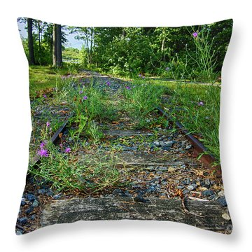Wildflowers Along The Tracks Throw Pillow