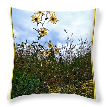 Throw Pillow featuring the photograph Wildflowers And Mentor Marsh by Joan  Minchak