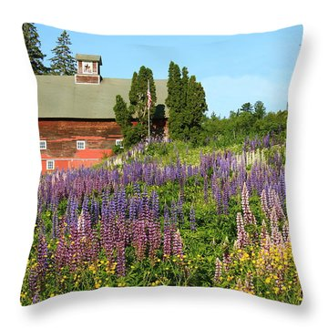 Wildflowers And Red Barn Throw Pillow by Roupen  Baker