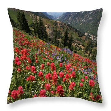 Wildflowers And View Down Canyon Throw Pillow by Brett Pelletier
