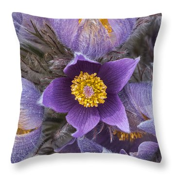 Wildflowers At The Delta Junction Bison Range Throw Pillow